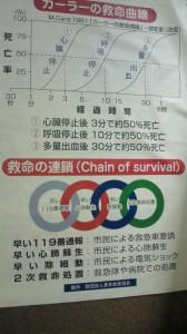 201011281155001.jpg