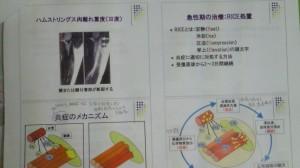 201108142117001.jpg